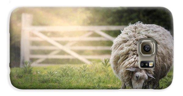 Sheep Galaxy S6 Case - Sheep by Joana Kruse