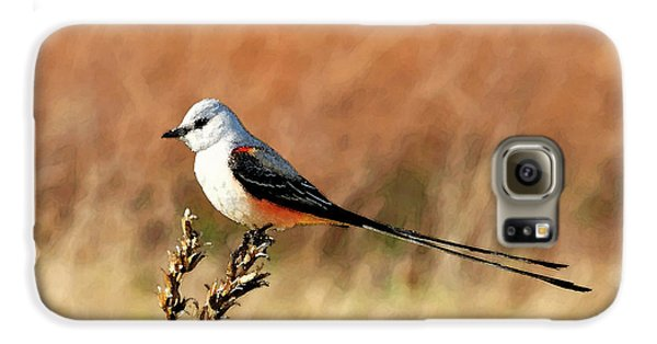 Scissor-tailed Flycatcher Galaxy S6 Case