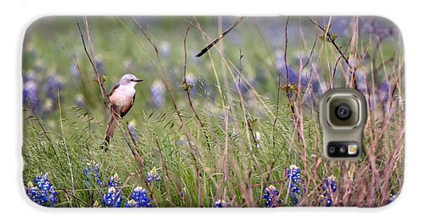 Scissor-tailed Flycatchers Galaxy S6 Case