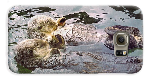 Sea Otters Holding Hands Galaxy S6 Case by BuffaloWorks Photography