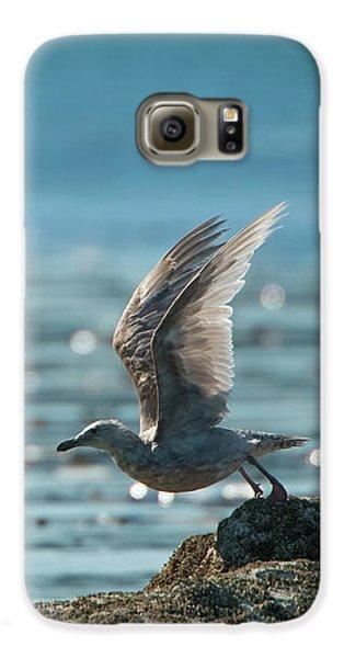 Seagull Takeoff Galaxy S6 Case