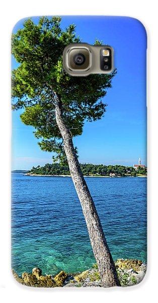 Seaside Leaning Tree In Rovinj, Croatia Galaxy S6 Case