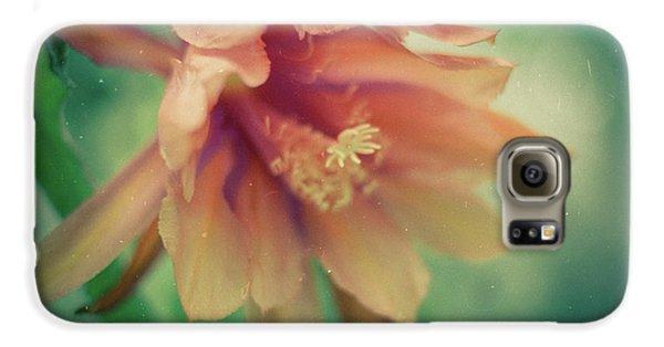 Galaxy S6 Case featuring the photograph Secret Garden by Ana V Ramirez