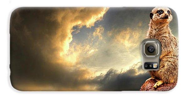 Meerkat Galaxy S6 Case - Sentry Duty by Meirion Matthias