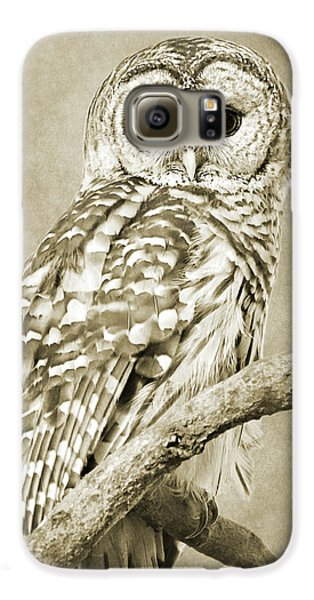 Sepia Owl Galaxy S6 Case