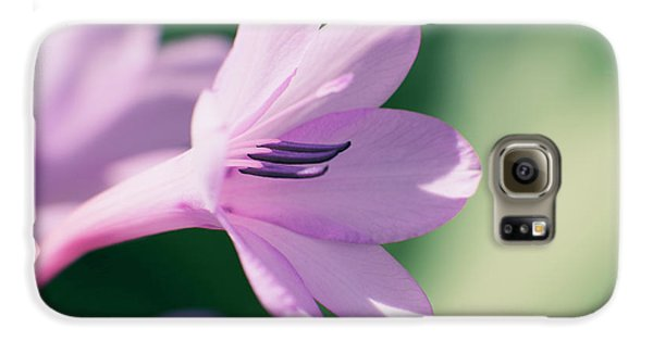 Galaxy S6 Case featuring the photograph She Listens Like Spring by Linda Lees