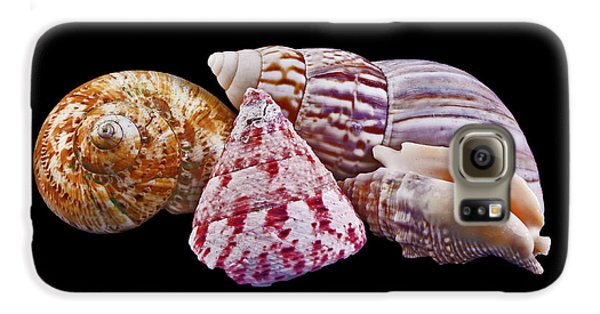 Galaxy S6 Case featuring the photograph Shells On Black by Bill Barber
