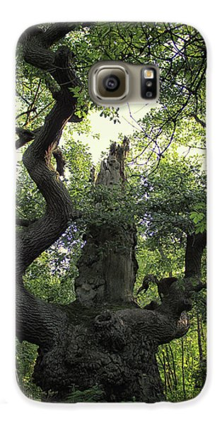 Sherwood Forest Galaxy S6 Case by Martin Newman