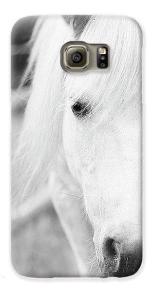 Shetland Pony Galaxy S6 Case by Tina Lee