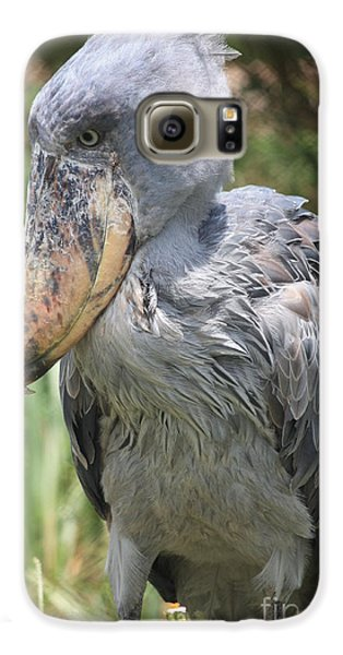 Shoebill Stork Galaxy S6 Case