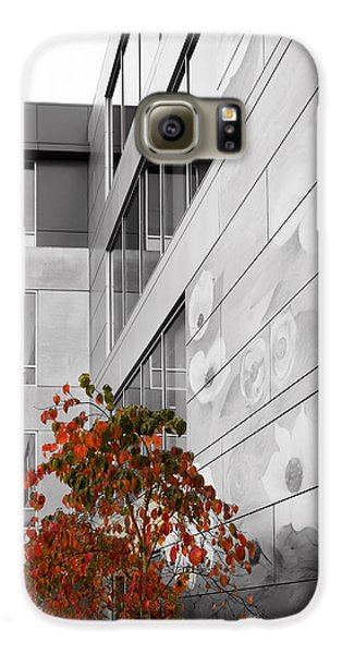 Shoreline City Hall Galaxy S6 Case