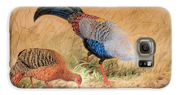 Siamese Pheasant  Galaxy S6 Case by Joseph Wolf