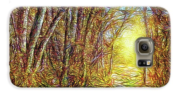 Silence Of A Forest Path Galaxy S6 Case