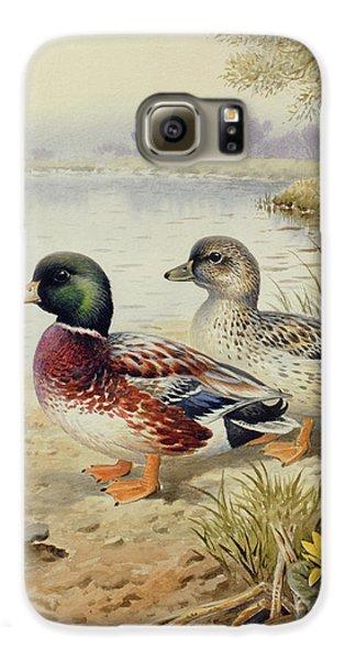 Silver Call Ducks Galaxy S6 Case