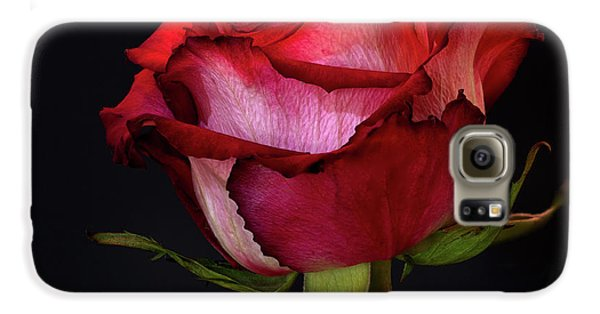 Single Rose Galaxy S6 Case