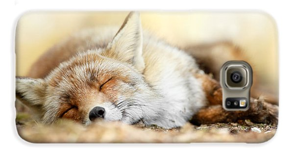 Sleeping Beauty -red Fox In Rest Galaxy S6 Case