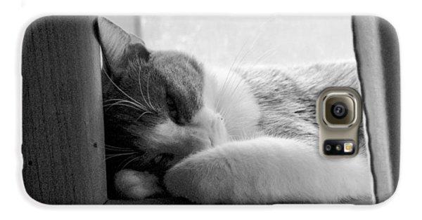 Sleepy Kitty Galaxy S6 Case