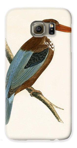 Smyrna Kingfisher Galaxy S6 Case