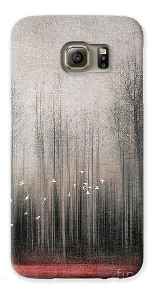 Bunting Galaxy S6 Case - Snow Birds by Priska Wettstein