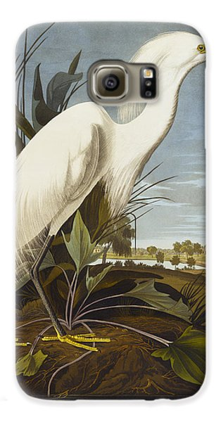 Snowy Heron Galaxy S6 Case by John James Audubon