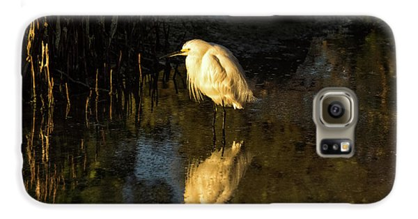 Snowy Kissed By Last Light Galaxy S6 Case
