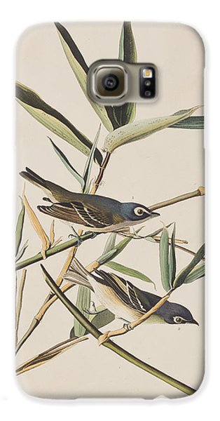 Solitary Flycatcher Or Vireo Galaxy S6 Case