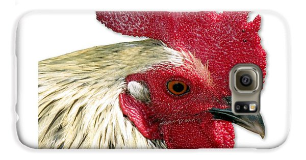 Special Edition Key West Rooster Galaxy S6 Case
