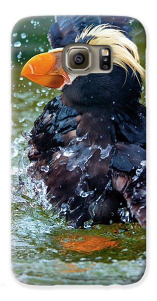 Puffin Galaxy S6 Case - Splish Splash by Mike Dawson