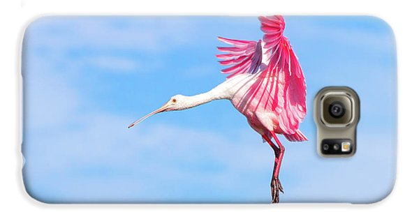 Spoonbill Ballet Galaxy S6 Case by Mark Andrew Thomas