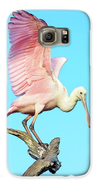 Spoonbill Flight Galaxy S6 Case