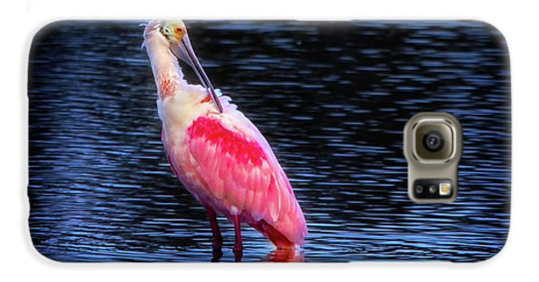 Spoonbill Sunset Galaxy S6 Case by Mark Andrew Thomas