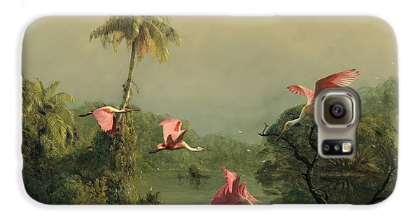 Spoonbills In The Mist Galaxy S6 Case