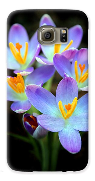 Galaxy S6 Case featuring the photograph Spring Crocus by Jessica Jenney