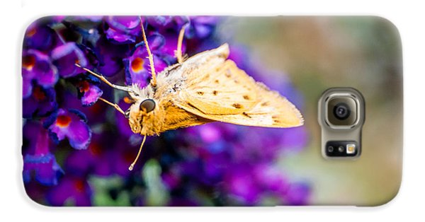 Spring Moth Galaxy S6 Case