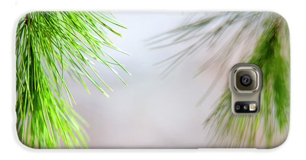 Spring Pine Abstract Galaxy S6 Case by Christina Rollo