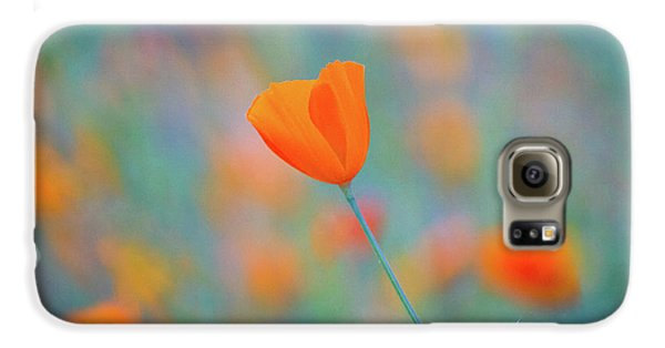 Flowers Galaxy S6 Case - Spring Poppy by Anthony Michael Bonafede