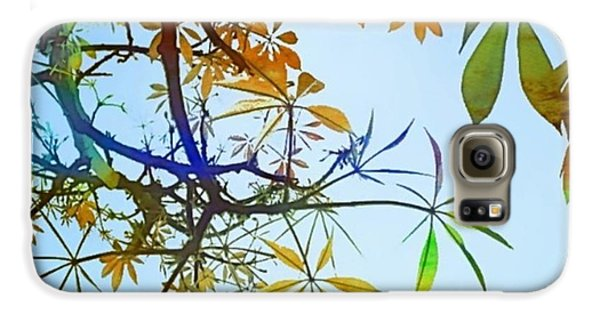 Design Galaxy S6 Case - #spring #tree #leaves With #watercolor by Shari Warren