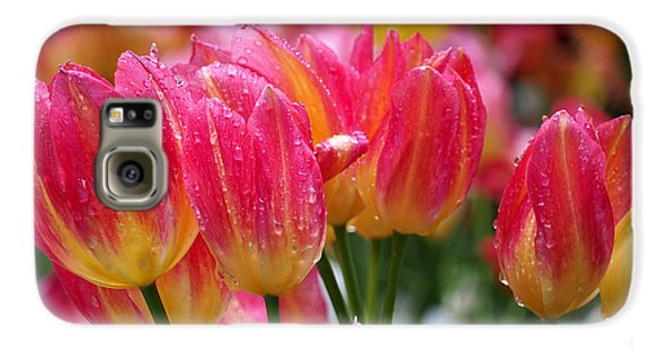 Spring Tulips In The Rain Galaxy S6 Case by Rona Black