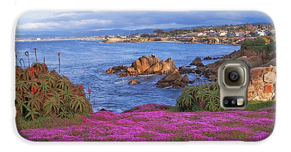 Springtime In Pacific Grove Galaxy S6 Case