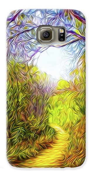 Springtime Pathway Discoveries Galaxy S6 Case by Joel Bruce Wallach