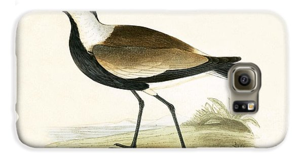 Spur Winged Plover Galaxy S6 Case by English School
