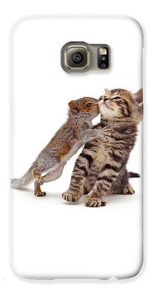 Squirrel Kiss Galaxy S6 Case