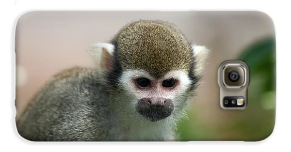 Squirrel Monkey Galaxy S6 Case by Amanda Elwell