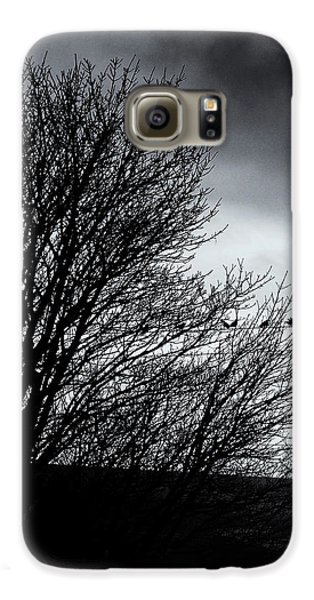 Starlings Roost Galaxy S6 Case by Philip Openshaw