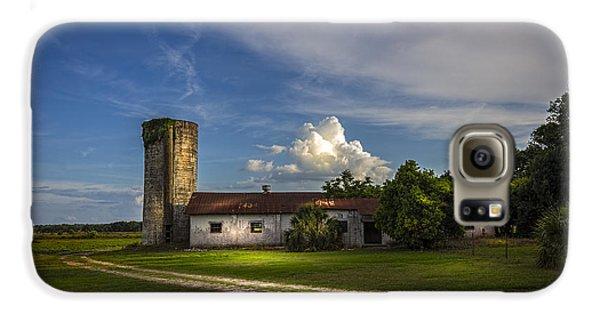 Strawberry County Galaxy S6 Case