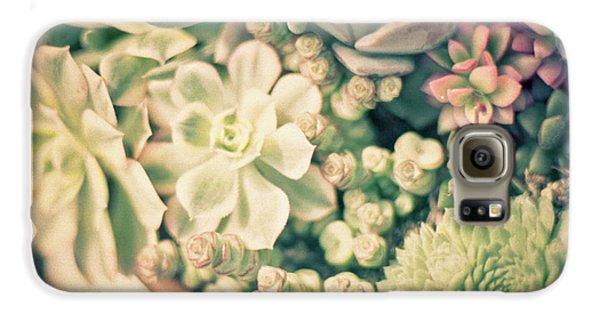 Galaxy S6 Case featuring the photograph Succulent Garden by Ana V Ramirez