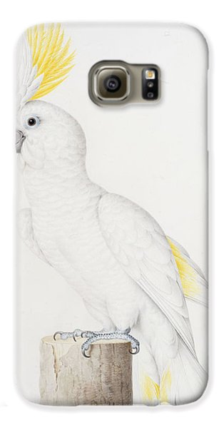 Sulphur Crested Cockatoo Galaxy S6 Case by Nicolas Robert