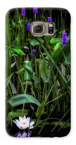 Galaxy S6 Case featuring the photograph Summer Swamp 2017 by Bill Wakeley