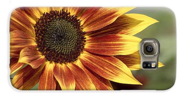 Sunflower Galaxy S6 Case