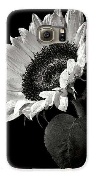 Sunflower In Black And White Galaxy S6 Case